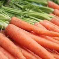 Scarsdale sallii porkkanat välipalaksi